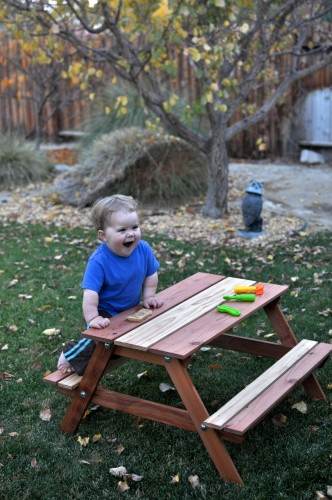 C and his picnic table